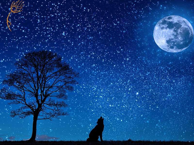 La relazione Luna - donna